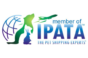 Moving - IPATA Logo