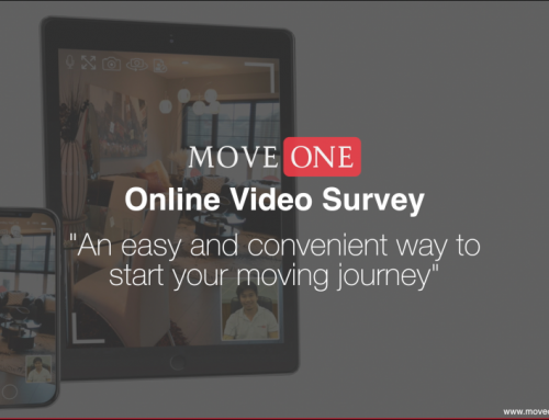 2021: Online Video Survey